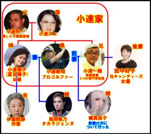 夏目雅子 姪 家系図